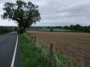Fields at House Cross